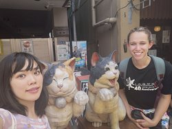 Found some cats with Mana Yanaka Tour