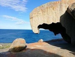 Best of Kangaroo Island