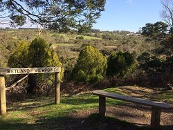 Wetland Viewpoint