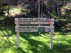 Take You Pick; 2 KM Or 4 KM Walk