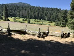 Your ride will go around Wawona Meadow which is quite nice!