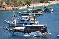 Boats for trip explore Komodo start from Labuan Bajo