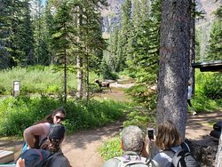 Beautiful area, great hikes for kids