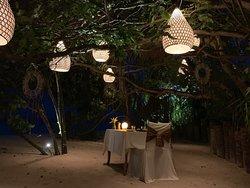 Jungle dining 로맨틱 정글 다이닝