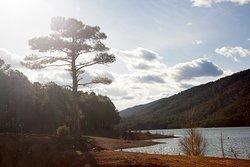 El pantano de Pena, un pequeño paraíso a 10 min de Valderrobres