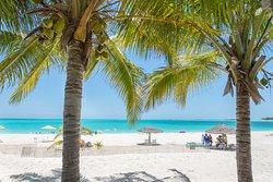 Coco Beach Bar and Treasure Cay beach