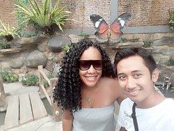 Bali Starmax Tour