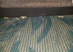 The cig butts found under my bed in our NON-smoking room!  Gross!!!