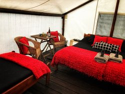glamping suite view 2 - gift included