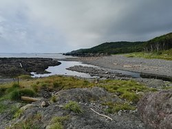 海岸(海に向かって左側)