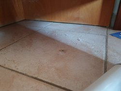 Poor state of repair and DIRTY! these are genuine pictures of room 237 before the owner Eva denies it!.