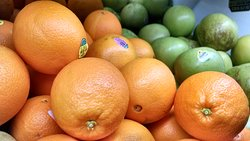 New Crop Citrus Available