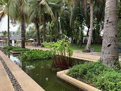 Very nice hotel in Siem Reap