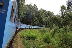 We did the fantastic train ride from Nuwara Eliya to Nunoya.