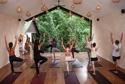 Radiantly Alive Yoga Studio