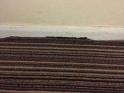 Carpet in bedroom