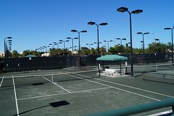 Kiwi's Back Courts - 5 through 14