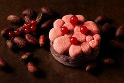 ルビーチョコレートと洋梨のタルト (2019年10月1日より販売開始)