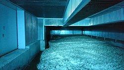 17.10【サントリー天然水奥大山ブナの森工場】雪室