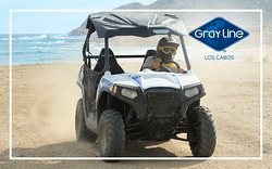 Try out the UTV Single Activity, for some fun in the desert!
