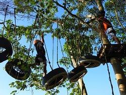 Amazing treetop adventure close to Palomino River