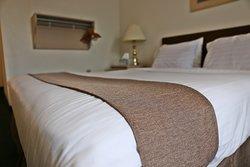 Single room (queen bed)