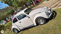 Exposição de Volkswagen antigos 1 edição
