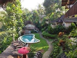 Las habitaciones en casas individuales alrededor de la piscina