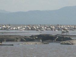 Nech Sar National Park