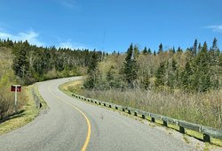 Winding part of the road on the Fundy Trail.