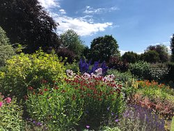 in summer the herbaceous borders are attractive for wildlife and humans alike