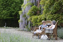 Relax on the terrace with your refreshments and views over the garden below (c) National Trust / Chris Lacey