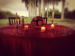 Romantic dinner setting