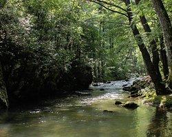 Moravica River.