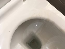DIRTY TOILET SEAT NOT CLEANED FROM PREVIOUS GUEST
