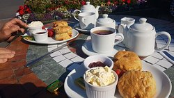 Superb cream teas today!