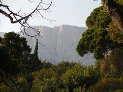 Горы, вид из парка