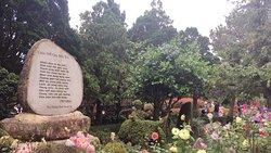 Cây xanh trong khuôn viên thiền viện