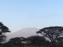 Le Kilimandjaro, vu depuis le Kenya et le Parc Amboseli