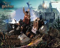 Hagrid's ride was fantastic