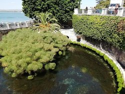 La Fonte Aretusa.