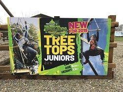 Junior Tree Tops Trail