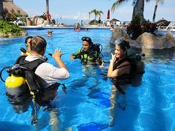 get the PADI or SSI Certification!