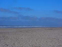 Olympic national park beach