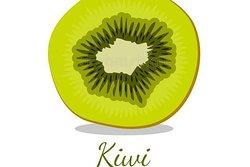 KIWI PRIVATE TOUR-TourswithLocals