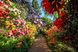 Leonardslee Lakes and Gardens