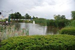 前庭には池がある。