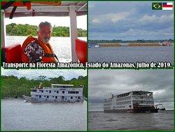 Floresta Amazônica, Amazonas, Brasil