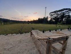 Kedai Mini Resto Rice Field