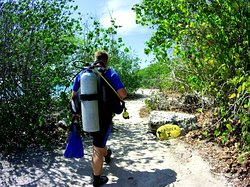 Visit the most beautiful dive sites during the guide dives! with Private Divers Bonaire
